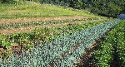 Les Ateliers des Jardins d'Agricoeur, 5 nouvelles dates !